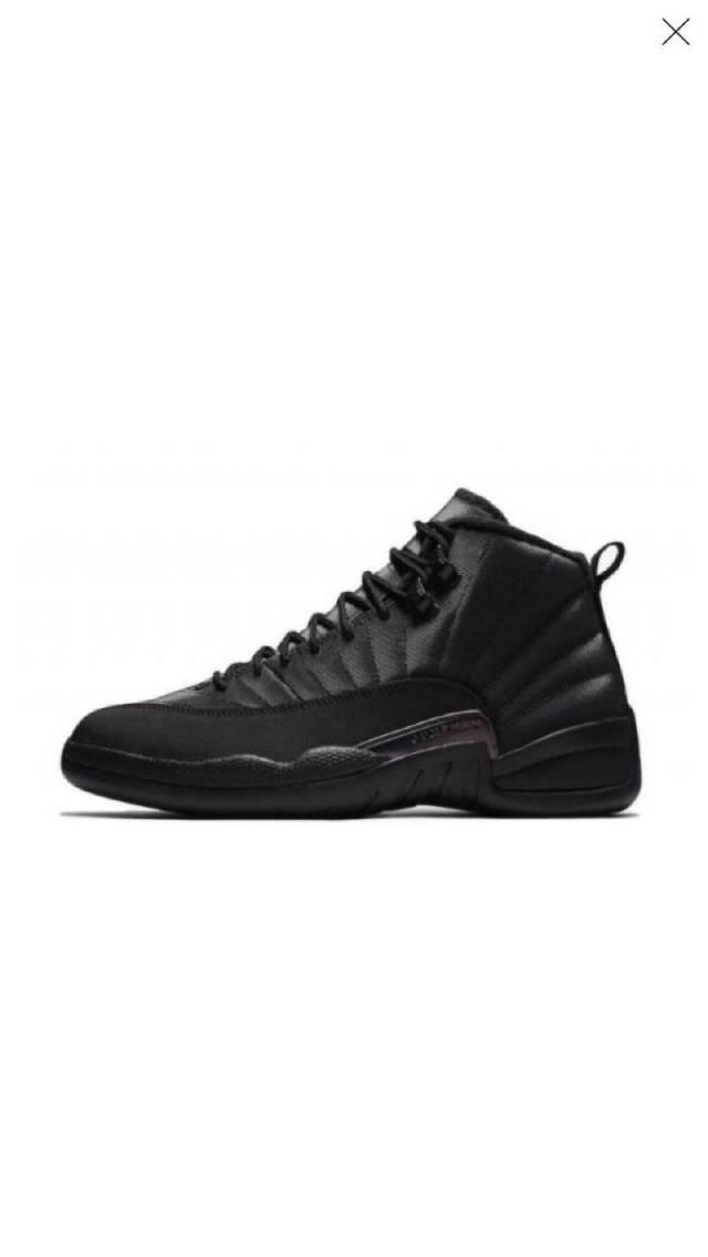 premium selection a30e7 bbc2c Air Jordan 12 Winterized Black