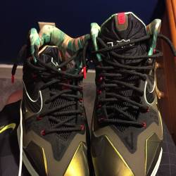 Lebron 11 kings pride