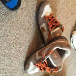 Nike dunk sb 6.0