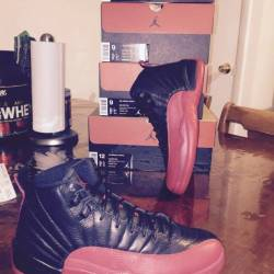 Air jordan 12s flu game