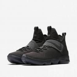 Nike men's lebron xiv 14 lmtd ...