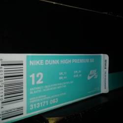 Premier x nike sb dunk high pr...