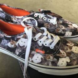 Vans authentic aspca cats sz 9...