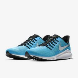 Nike air zoom vomero 14 blue l...