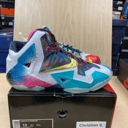 Vnds nike lebron 11 what the l...